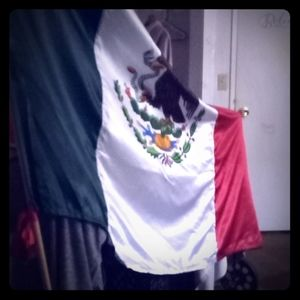 Other - Flag originated from Mexico